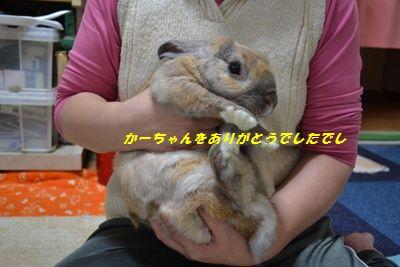 041_20120324133724.jpg