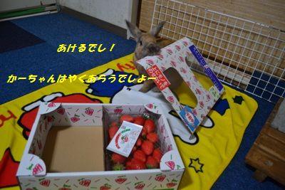 049_20120116225255.jpg