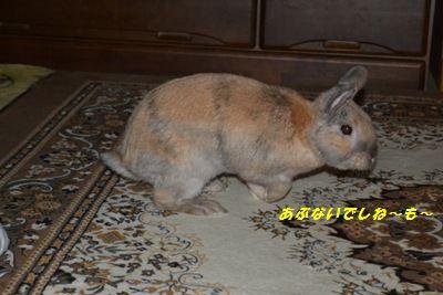 092_20120707164601.jpg