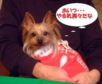 s_DSCF0169.jpg