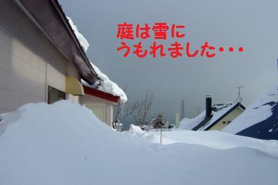 s_DSCF0323.jpg