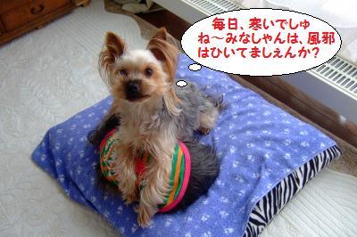 s_DSCF0480.jpg