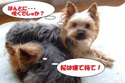 s_DSCF0668.jpg