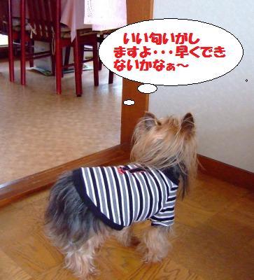 s_DSCF0845.jpg