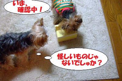 s_DSCF0897.jpg