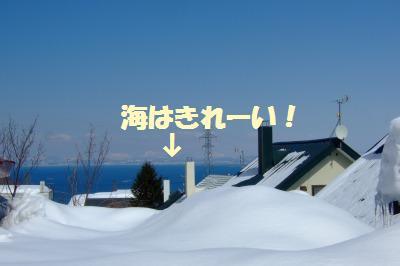 s_DSCF1268.jpg