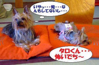 s_DSCF1362.jpg