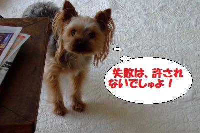 s_DSCF1605.jpg