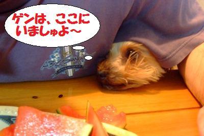 s_DSCF1879.jpg