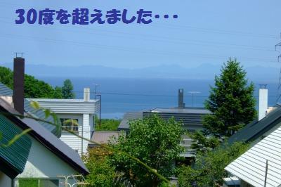 s_DSCF1919.jpg