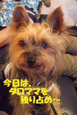 s_DSCF2063.jpg