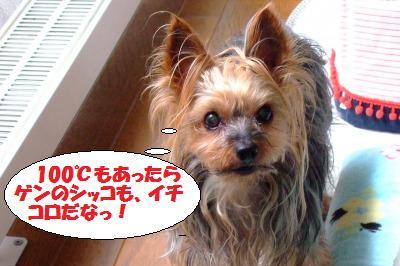 s_DSCF2345.jpg