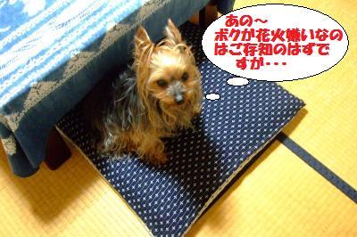 s_DSCF2470.jpg