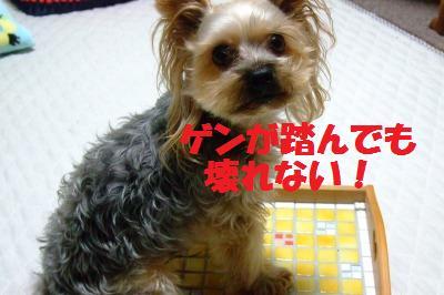 s_DSCF2662.jpg