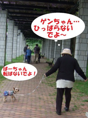 s_DSCF9010.jpg