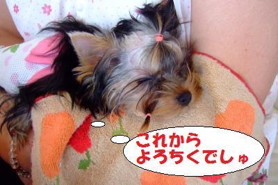 s_DSCF9264.jpg