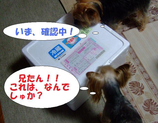 s_DSCF9267.jpg