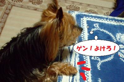 s_DSCF9283.jpg