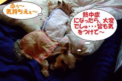 s_DSCF9377.jpg