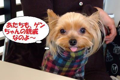 s_DSCF9665.jpg