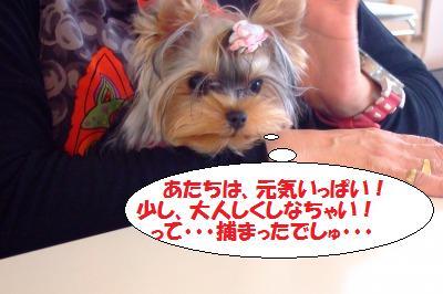 s_DSCF9681.jpg