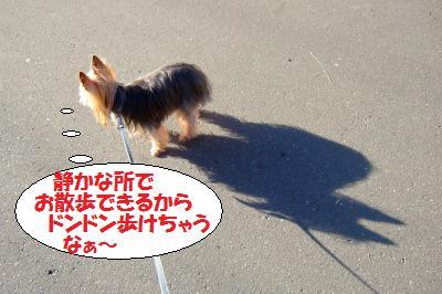 s_DSCF9733.jpg