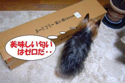 s_DSCF9939.jpg