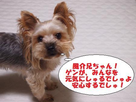 s_PA030486.jpg