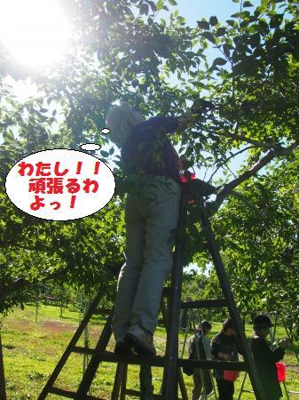 s_PA040508.jpg