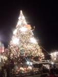 TDS2013クリスマス5
