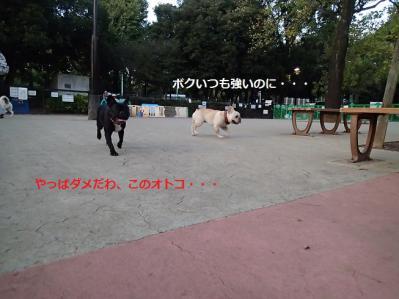 2012102410.jpg