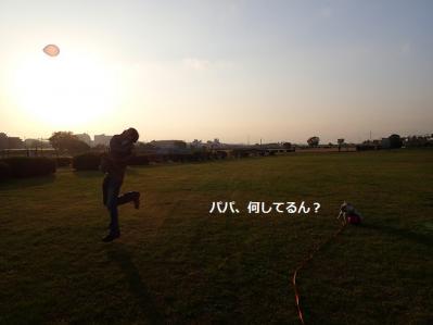 201211194.jpg