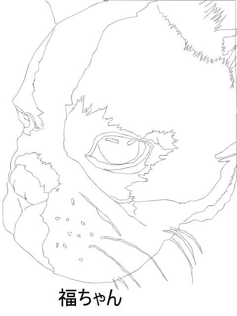 福ちゃんの横顔2