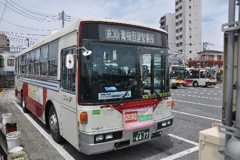 13_20111223191921.jpg
