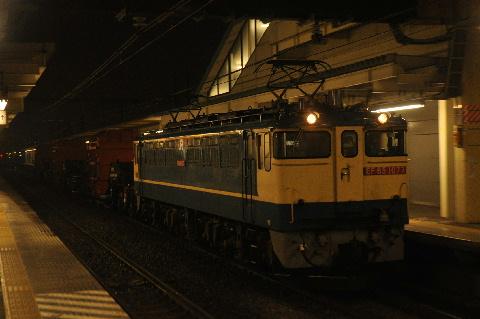 30205.jpg