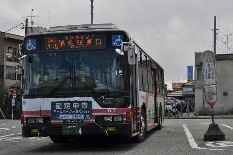 31202.jpg