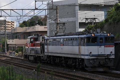 5_20111230045043.jpg