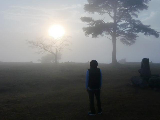竹田城跡 雲海に浮かぶ天空の城