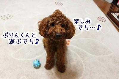 IMG_5961.jpg