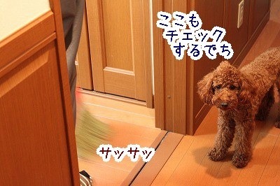 IMG_5977.jpg
