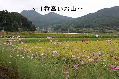 IMG_6060.jpg