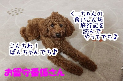 IMG_6245.jpg