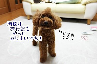 IMG_6264.jpg
