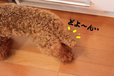 IMG_6735.jpg