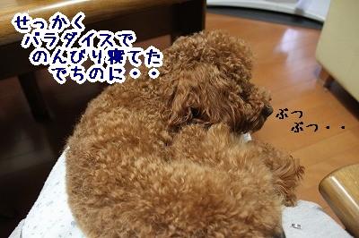 IMG_6955.jpg
