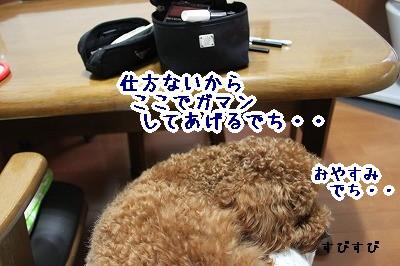 IMG_6956.jpg