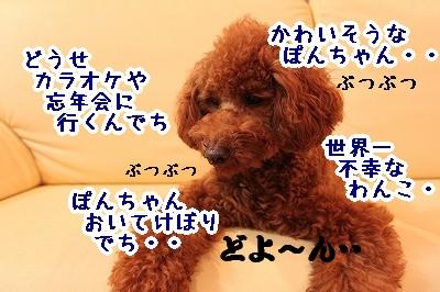 IMG_7081.jpg