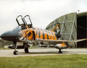 Fighter_tiger.jpg