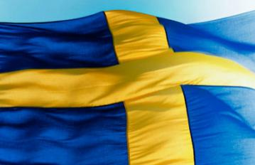 The_Swedish_flag.jpg