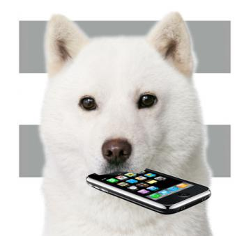 softbank_iPhone.jpg